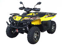 Sym QuadRaider 600 New