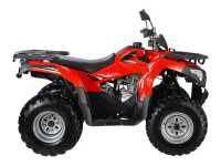 Wels ATV Bison