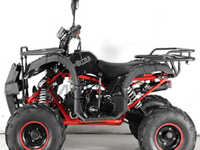 Motax ATV Grizlik-7 125