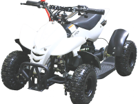 Motax ATV H4 mini 50